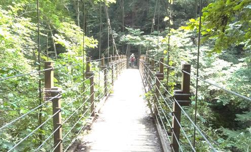 高尾山吊り橋